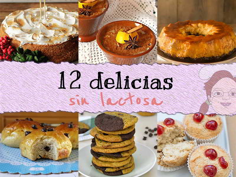 12 delicias sin lactosa